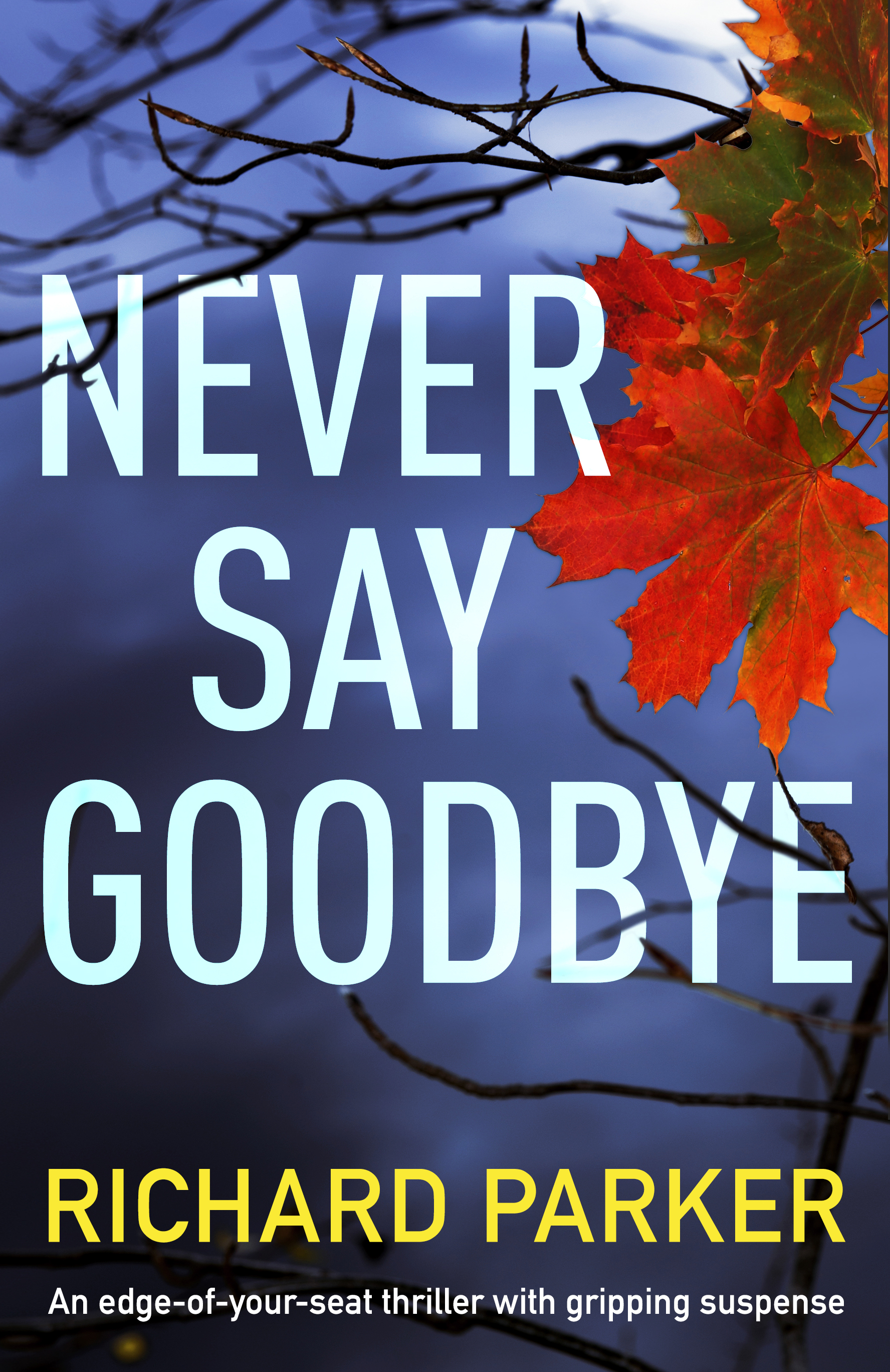 Never_Say_Goodbye_eBook.jpg